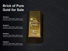 Brick Of Pure Gold For Sale Ppt PowerPoint Presentation Summary Visuals