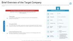 Brief Overview Of The Target Company Ideas PDF
