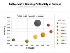 Bubble Matrix Showing Profitability Of Success Ppt PowerPoint Presentation Icon Images PDF