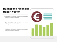 Budget And Financial Report Vector Ppt Powerpoint Presentation Summary Show