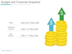 Budget And Financial Snapshot Ppt PowerPoint Presentation Example