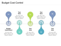 Budget Cost Control Ppt PowerPoint Presentation Inspiration Themes Cpb