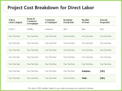 Budget Cost Project Plan Project Cost Breakdown For Direct Labor Formats PDF