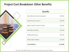 Budget Cost Project Plan Project Cost Breakdown Other Benefits Inspiration PDF