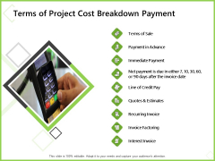 Budget Cost Project Plan Terms Of Project Cost Breakdown Payment Pictures PDF