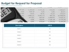 Budget For Request For Proposal Ppt PowerPoint Presentation Icon Guidelines