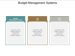 Budget Management Systems Ppt PowerPoint Presentation Professional Guide Cpb