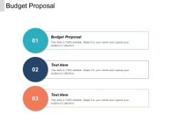 Budget Proposal Ppt PowerPoint Presentation Portfolio Backgrounds Cpb