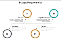 Budget Requirements Ppt PowerPoint Presentation Summary Examples Cpb