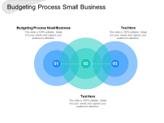 Budgeting Process Small Business Ppt PowerPoint Presentation Summary Professional Cpb