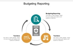 Budgeting Reporting Ppt PowerPoint Presentation Introduction Cpb