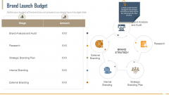 Building Innovation Capabilities And USP Detection Brand Launch Budget Ppt Designs PDF