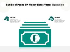 Bundle Of Pound UK Money Notes Vector Illustration Ppt PowerPoint Presentation Show Graphic Tips PDF
