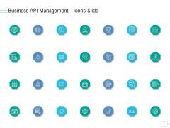 Business API Management Icons Slide Ppt Layouts Deck PDF