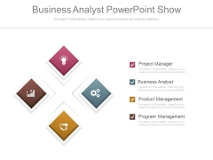 Business Analyst Powerpoint Show