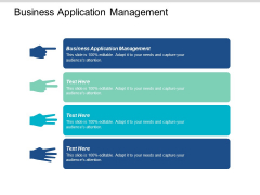 Business Application Management Ppt PowerPoint Presentation Show Example Cpb
