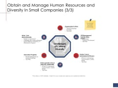 Business Assessment Outline Obtain And Manage Human Resources And Diversity In Small Companies Organization Designs PDF