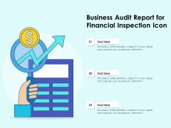 Business Audit Report For Financial Inspection Icon Ppt PowerPoint Presentation Show Graphics Download PDF