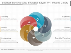 Business Banking Sales Strategies Layout Ppt Images Gallery