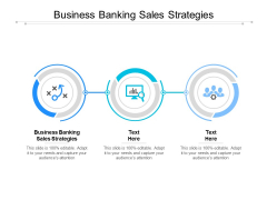 Business Banking Sales Strategies Ppt PowerPoint Presentation Model Microsoft Cpb