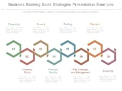Business Banking Sales Strategies Presentation Examples