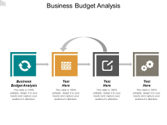Business Budget Analysis Ppt PowerPoint Presentation Inspiration Icon Cpb