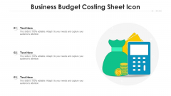Business Budget Costing Sheet Icon Ppt PowerPoint Presentation Pictures Icon PDF