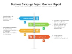 Business Campaign Project Overview Report Ppt PowerPoint Presentation File Microsoft PDF