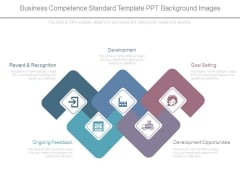 Business Competence Standard Template Ppt Background Images