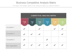 Business Competitive Analysis Matrix
