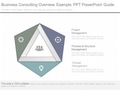 Business Consulting Overview Example Ppt Powerpoint Guide
