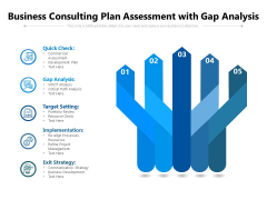 Business Consulting Plan Assessment With Gap Analysis Ppt PowerPoint Presentation Gallery Ideas PDF