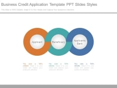 Business Credit Application Template Ppt Slides Styles