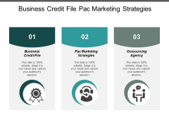 Business Credit File Pac Marketing Strategies Outsourcing Agency Ppt PowerPoint Presentation Infographic Template Elements