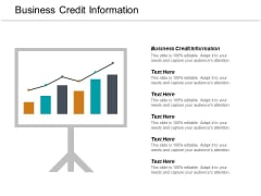 Business Credit Information Ppt PowerPoint Presentation Layouts Guidelines Cpb