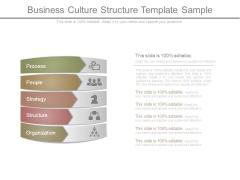 Business Culture Structure Template Sample