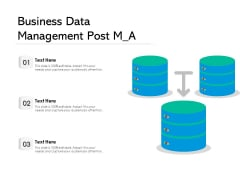 Business Data Management Post M A Ppt PowerPoint Presentation Gallery Visuals PDF