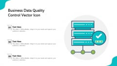 Business Data Quality Control Vector Icon Ppt PowerPoint Presentation File Shapes PDF