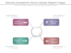 Business Development Service Sample Diagram Images