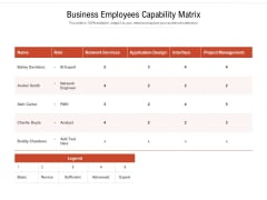 Business Employees Capability Matrix Ppt PowerPoint Presentation Icon Example File PDF