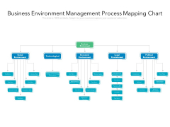 Business Environment Management Process Mapping Chart Ppt PowerPoint Presentation Gallery Slideshow PDF