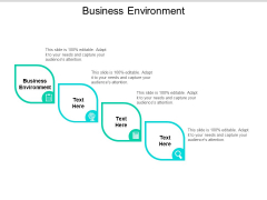 Business Environment Ppt PowerPoint Presentation Outline Visuals Cpb