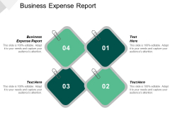 Business Expense Report Ppt PowerPoint Presentation Ideas Icons Cpb