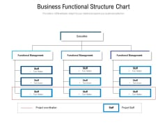 Business Functional Structure Chart Ppt PowerPoint Presentation File Rules PDF