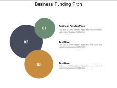 Business Funding Pitch Ppt PowerPoint Presentation Layouts Background Cpb