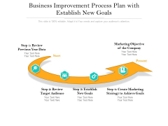 Business Improvement Process Plan With Establish New Goals Ppt PowerPoint Presentation Layouts Samples PDF