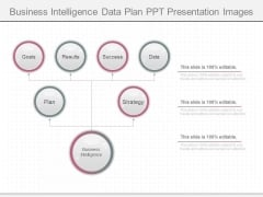Business Intelligence Data Plan Ppt Presentation Images