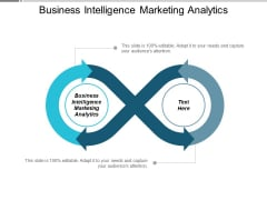 Business Intelligence Marketing Analytics Ppt Powerpoint Presentation Model Elements Cpb