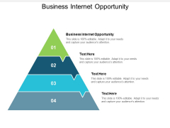 Business Internet Opportunity Ppt PowerPoint Presentation File Graphics Download Cpb