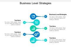 Business Level Strategies Ppt PowerPoint Presentation Visual Aids Cpb